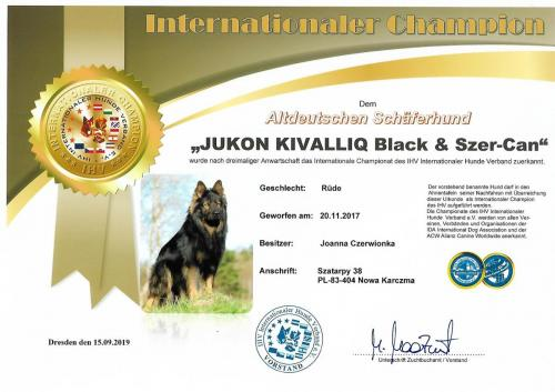 interchampion Jukon
